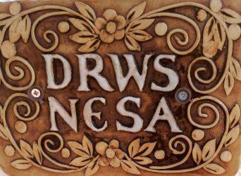 Drws Nesa
